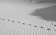 sandcitycaliforniadunesfineart