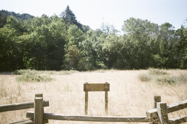 post-ranch-inn-portrait-proposal-wedding-62