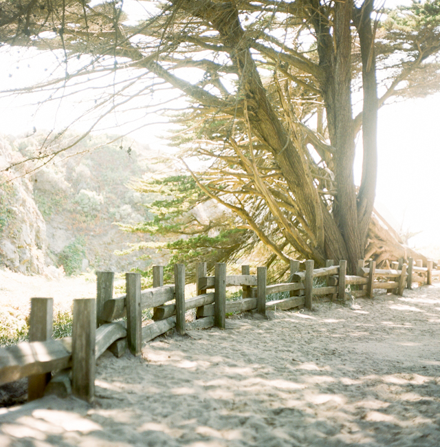 pfeiffer-beach-elopement-photos-by-helios-images-18
