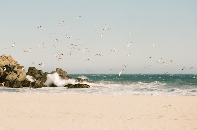 pfeiffer-beach-elopement-photos-by-helios-images-25