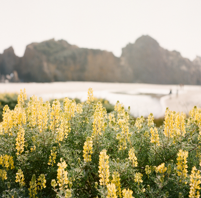 pfeiffer-beach-elopement-photos-by-helios-images-75