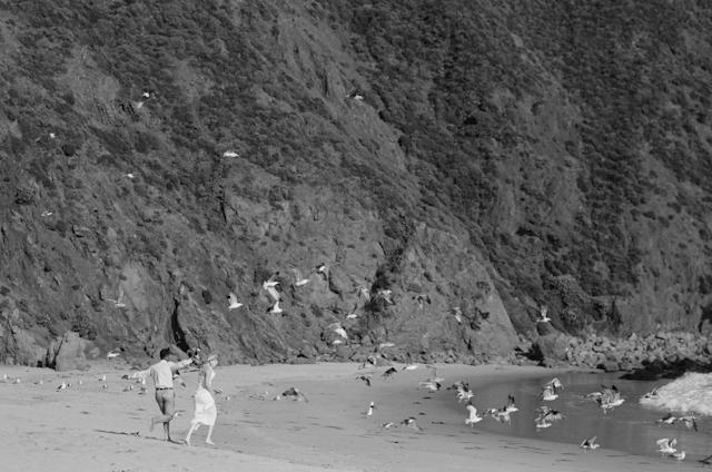 pfeiffer-beach-wedding-by-helios-images-13