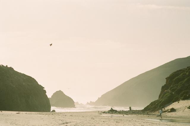 pfeiffer-beach-wedding-by-helios-images-47