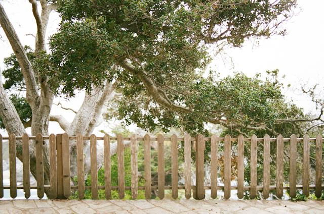 wedding-mcway-falls-glen-oaks-big-sur-by-helios-images-12