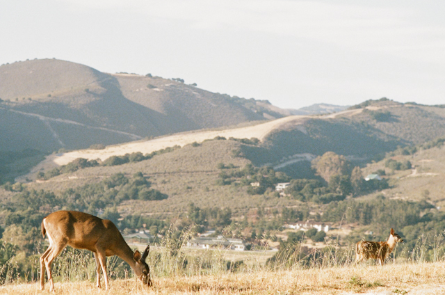 carmel-valley-ranch-wedding-by-helios-images-119