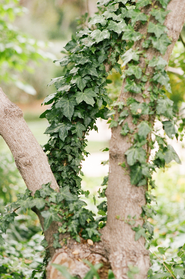 carmel-valley-ranch-wedding-by-helios-images-20
