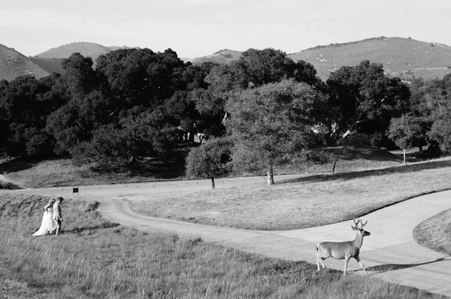 carmel-valley-ranch-wedding-by-helios-images-61