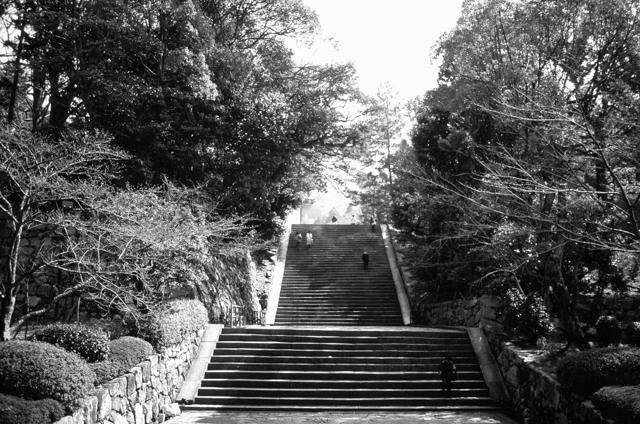 Japan-photos-by-douglas-despres-25