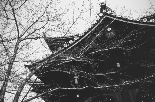 Japan-photos-by-douglas-despres-36